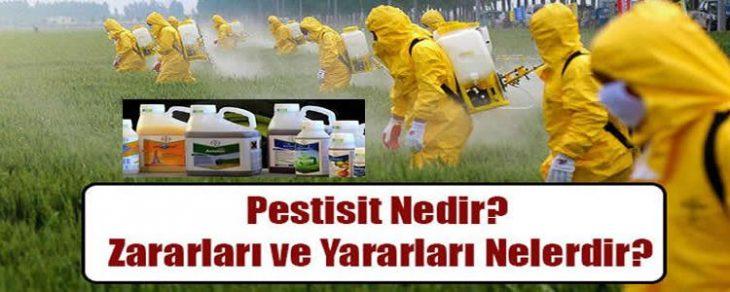 www.ilaclama1.com-pestisit-nedir-e1565250990766 Sağlıklı Yaşa ve Sağlıklı Öl Etkinlik