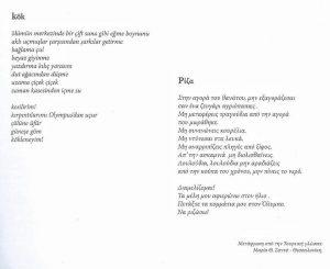 sukran-aydin-kok-siiri-2-300x245 Hülya Tozlu Şiir Kitabı Yorumu Mürekkep Acısı