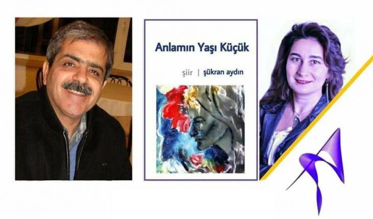 Anlamin Yasi Kucuk sukran aydin siir kitabi Ahmet Gunbas yorumu_